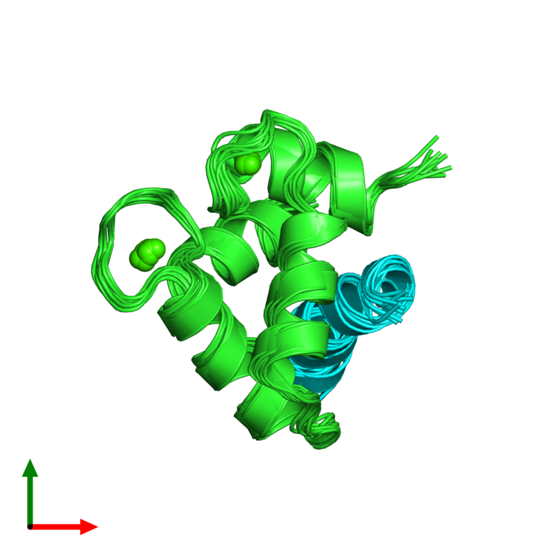 <div class='caption-body'><ul class ='image_legend_ul'>The deposited structure of PDB entry 2llq coloured by chain and viewed from the top. The entry contains: <li class ='image_legend_li'>1 copy of Calmodulin-1</li><li class ='image_legend_li'>1 copy of Estrogen receptor</li><li class ='image_legend_li'>There is 1 non-polymeric molecule<ul class ='image_legend_ul'><li class ='image_legend_li'>2 copies of CALCIUM ION</li></ul></li></div>