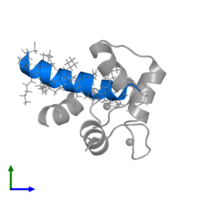 PDB 2llq contains 1 copy of Estrogen receptor in assembly 1. This protein is highlighted and viewed from the front.