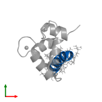 PDB 2llq contains 1 copy of Estrogen receptor in assembly 1. This protein is highlighted and viewed from the top.