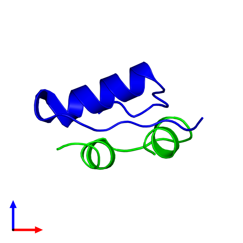 <div class='caption-body'><ul class ='image_legend_ul'> Dimeric assembly 1 of PDB entry 2m1e coloured by chemically distinct molecules and viewed from the side. This assembly contains:<li class ='image_legend_li'>One copy of Insulin A chain</li><li class ='image_legend_li'>One copy of Insulin B chain</li></ul></div>