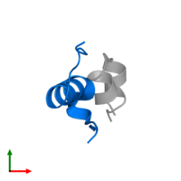 PDB 2m1e contains 1 copy of Insulin B chain in assembly 1. This protein is highlighted and viewed from the top.