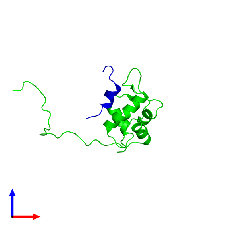 <div class='caption-body'><ul class ='image_legend_ul'> Dimeric assembly 1 of PDB entry 2mps coloured by chemically distinct molecules and viewed from the front. This assembly contains:<li class ='image_legend_li'>One copy of E3 ubiquitin-protein ligase Mdm2</li><li class ='image_legend_li'>One copy of Tumor protein p73</li></ul></div>