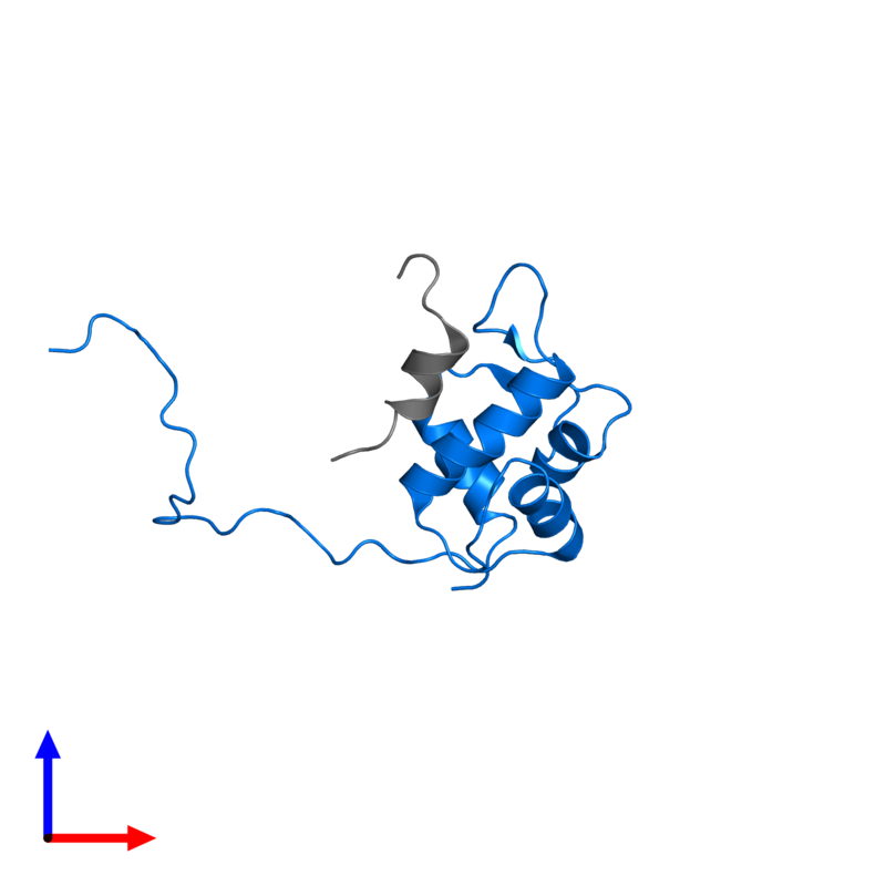 <div class='caption-body'>PDB entry 2mps contains 1 copy of E3 ubiquitin-protein ligase Mdm2 in assembly 1. This protein is highlighted and viewed from the front.</div>