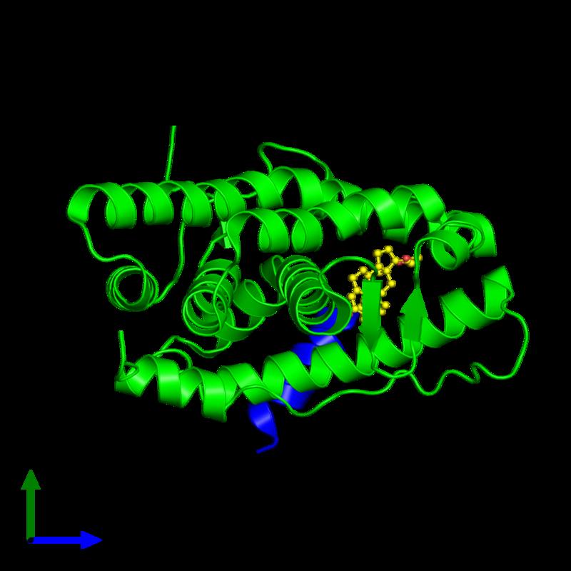<div class='caption-body'><ul class ='image_legend_ul'>The deposited structure of PDB entry 2ovh coloured by chemically distinct molecules and viewed from the side. The entry contains: <li class ='image_legend_li'>1 copy of Progesterone receptor</li><li class ='image_legend_li'>1 copy of SMRT peptide</li><li class ='image_legend_li'>There is 1 non-polymeric molecule<ul class ='image_legend_ul'><li class ='image_legend_li'>1 copy of 4-[(11BETA,17BETA)-17-METHOXY-17-(METHOXYMETHYL)-3-OXOESTRA-4,9-DIEN-11-YL]BENZALDEHYDE OXIME</li></ul></li></div>