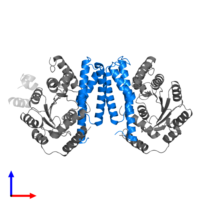 <div class='caption-body'>PDB entry 2p5t contains 2 copies of Putative transcriptional regulator PezA in assembly 1. This protein is highlighted and viewed from the front.</div>