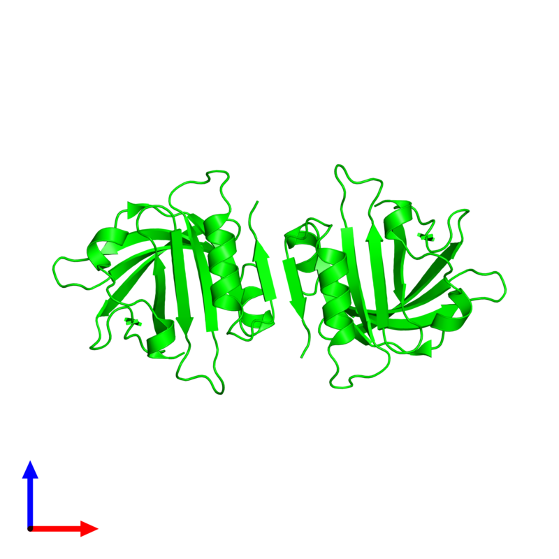 <div class='caption-body'><ul class ='image_legend_ul'> Dimeric assembly 1 of PDB entry 2q2m coloured by chemically distinct molecules and viewed from the side. This assembly contains:<li class ='image_legend_li'>2 copies of Beta-lactoglobulin</li></ul></div>