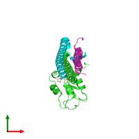 PDB 2qfa coloured by chain and viewed from the top.