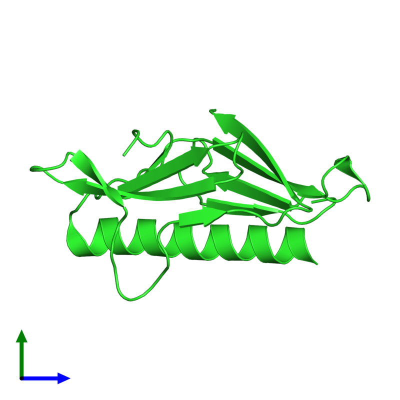 <div class='caption-body'><ul class ='image_legend_ul'> Monomeric assembly 2 of PDB entry 2qv8 coloured by chain and viewed from the side. This assembly contains:<li class ='image_legend_li'>One copy of General secretion pathway protein H</li></ul></div>