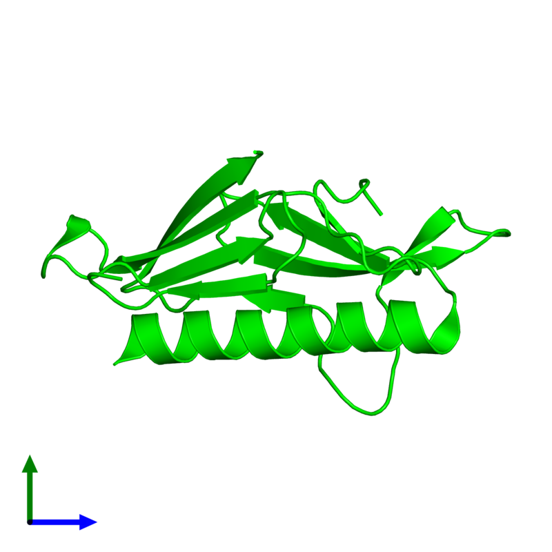 <div class='caption-body'><ul class ='image_legend_ul'> Monomeric assembly 2 of PDB entry 2qv8 coloured by chemically distinct molecules and viewed from the side. This assembly contains:<li class ='image_legend_li'>One copy of General secretion pathway protein H</li></ul></div>