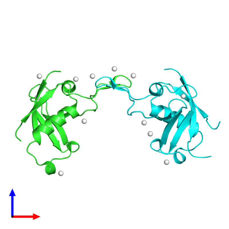 <div class='caption-body'><ul class ='image_legend_ul'>The deposited structure of PDB entry 2r2o coloured by chain and viewed from the front. The entry contains: <li class ='image_legend_li'>2 copies of Plexin-B1</li><li class ='image_legend_li'>There is 1 non-polymeric molecule<ul class ='image_legend_ul'><li class ='image_legend_li'>12 copies of UNKNOWN ATOM OR ION</li></ul></li></div>
