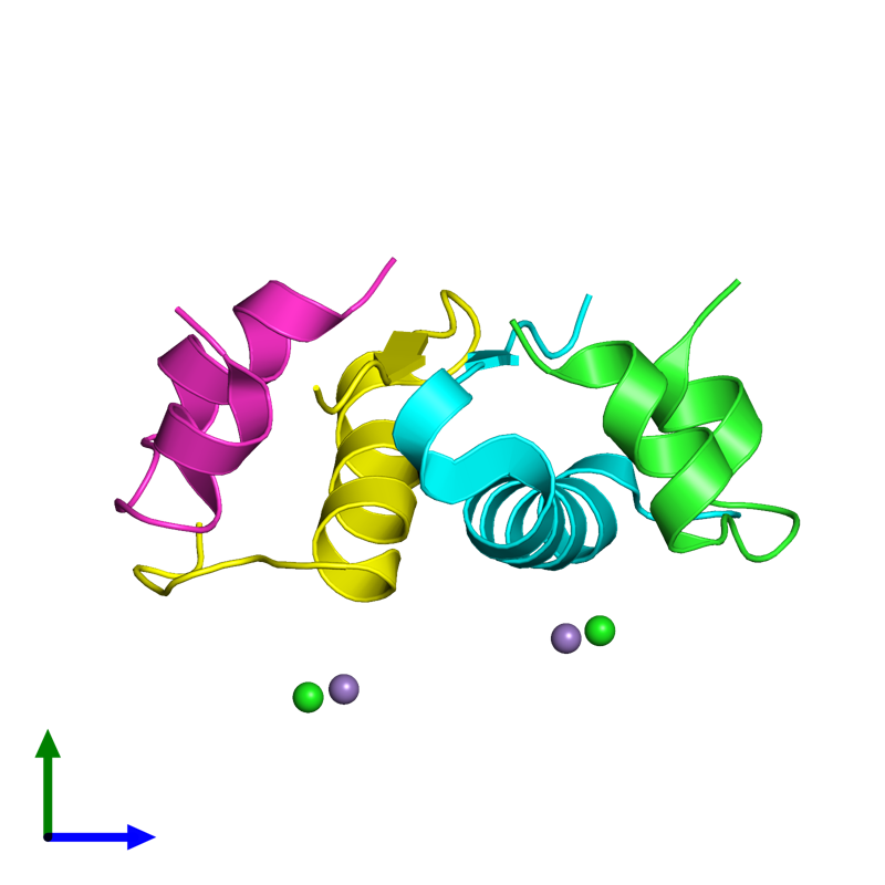 <div class='caption-body'><ul class ='image_legend_ul'>The deposited structure of PDB entry 2r34 coloured by chain and viewed from the side. The entry contains: <li class ='image_legend_li'>2 copies of Insulin A chain</li><li class ='image_legend_li'>2 copies of Insulin B chain</li><li class ='image_legend_li'>2 non-polymeric entities<ul class ='image_legend_ul'><li class ='image_legend_li'>2 copies of MANGANESE (II) ION</li><li class ='image_legend_li'>2 copies of CHLORIDE ION</li></ul></li></div>