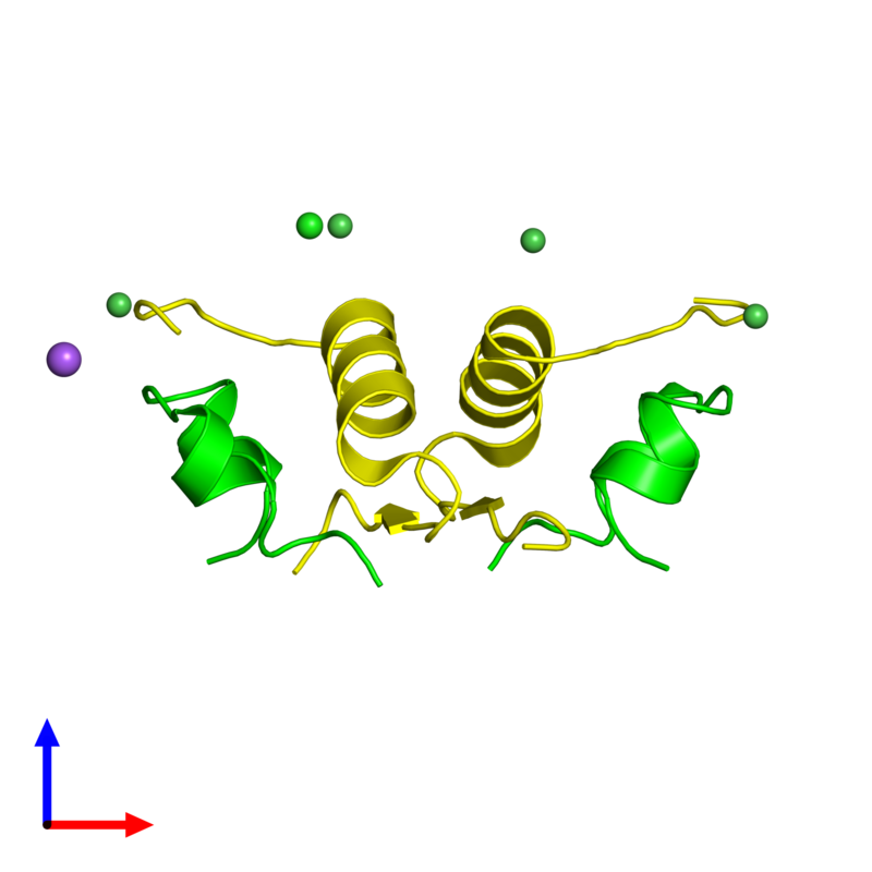 <div class='caption-body'><ul class ='image_legend_ul'>The deposited structure of PDB entry 2r36 coloured by chemically distinct molecules and viewed from the side. The entry contains: <li class ='image_legend_li'>2 copies of Insulin A chain</li><li class ='image_legend_li'>2 copies of Insulin B chain</li><li class ='image_legend_li'>3 non-polymeric entities<ul class ='image_legend_ul'><li class ='image_legend_li'>4 copies of NICKEL (II) ION</li><li class ='image_legend_li'>1 copy of SODIUM ION</li><li class ='image_legend_li'>1 copy of CHLORIDE ION</li></ul></li></div>