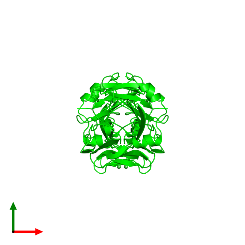 <div class='caption-body'><ul class ='image_legend_ul'> Dimeric assembly 1 of PDB entry 2v24 coloured by chemically distinct molecules and viewed from the top. This assembly contains:<li class ='image_legend_li'>2 copies of SPRY domain-containing SOCS box protein 4</li><li class ='image_legend_li'>2 copies of NICKEL (II) ION</li></ul></div>
