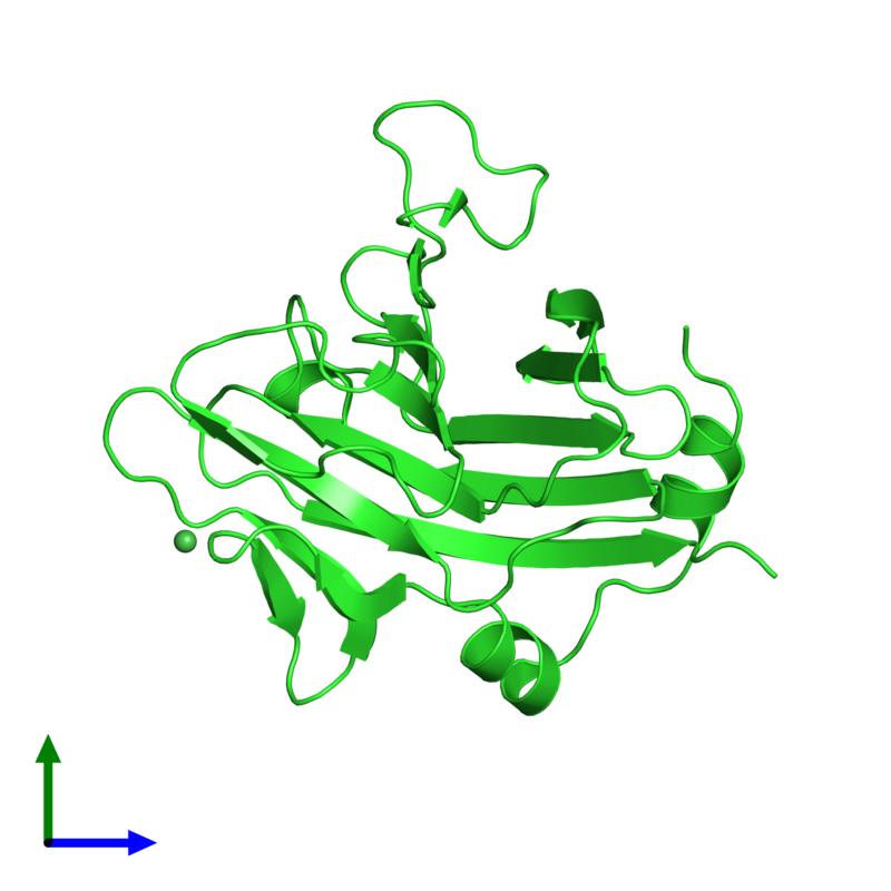 <div class='caption-body'><ul class ='image_legend_ul'>The deposited structure of PDB entry 2v24 coloured by chain and viewed from the front. The entry contains: <li class ='image_legend_li'>1 copy of SPRY domain-containing SOCS box protein 4</li><li class ='image_legend_li'>There is 1 non-polymeric molecule<ul class ='image_legend_ul'><li class ='image_legend_li'>1 copy of NICKEL (II) ION</li></ul></li></div>