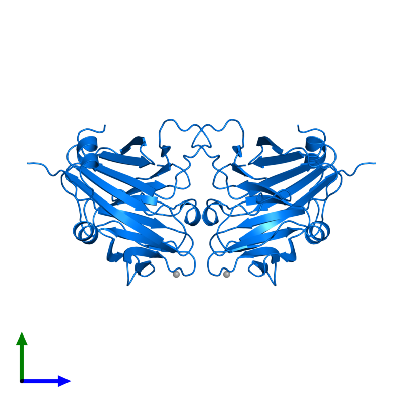 <div class='caption-body'>PDB entry 2v24 contains 2 copies of SPRY domain-containing SOCS box protein 4 in assembly 1. This protein is highlighted and viewed from the front.</div>