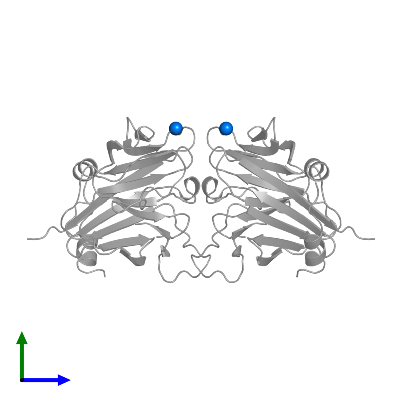 <div class='caption-body'>PDB entry 2v24 contains 2 copies of NICKEL (II) ION in assembly 1. This small molecule is highlighted and viewed from the front.</div>