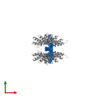 PDB 2v4h contains 4 copies of NF-kappa-B essential modulator in assembly 1. This protein is highlighted and viewed from the top.