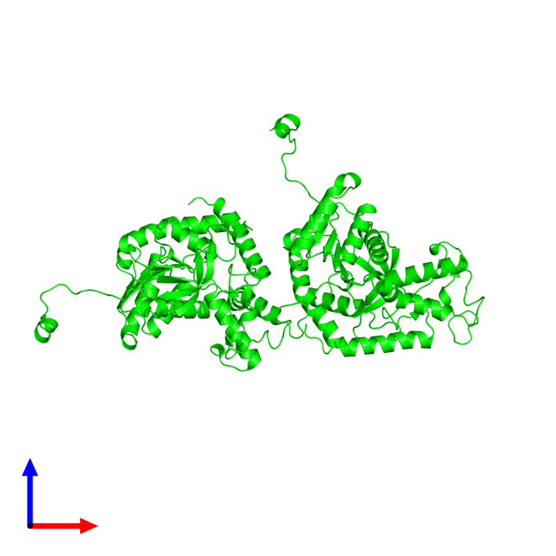<div class='caption-body'><ul class ='image_legend_ul'>The deposited structure of PDB entry 2v65 coloured by chemically distinct molecules and viewed from the front. The entry contains: <li class ='image_legend_li'>2 copies of L-lactate dehydrogenase A chain</li><li class ='image_legend_li'>There are no non-polymeric molecules</li></ul></li></ul></li></div>