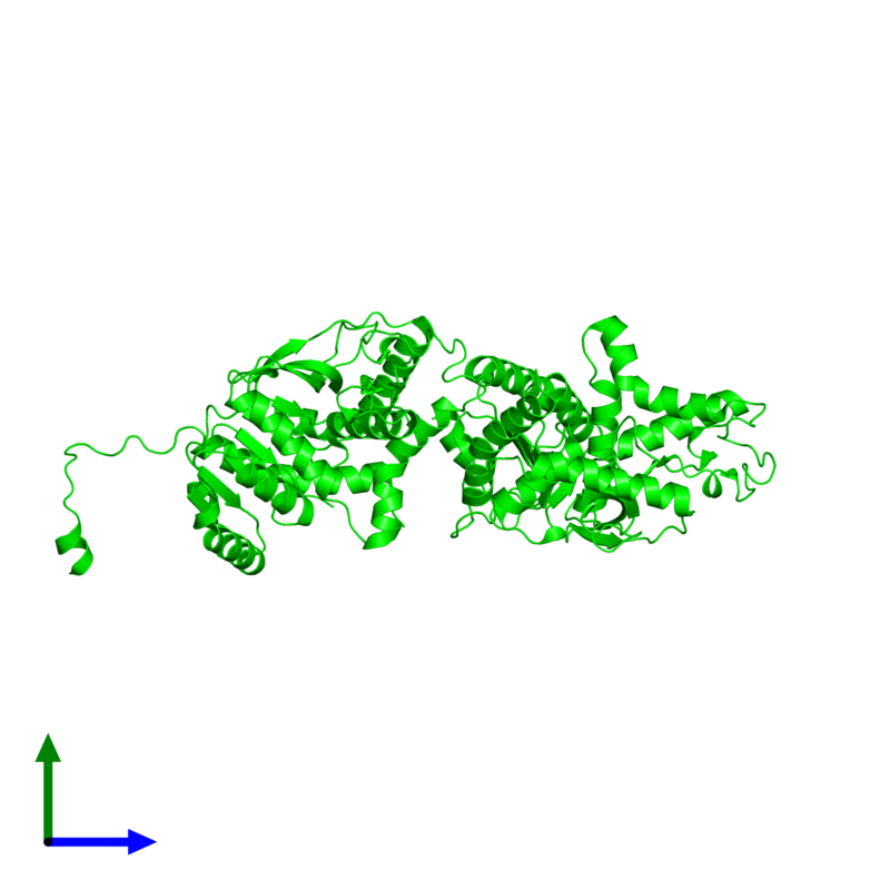 <div class='caption-body'><ul class ='image_legend_ul'>The deposited structure of PDB entry 2v65 coloured by chemically distinct molecules and viewed from the side. The entry contains: <li class ='image_legend_li'>2 copies of L-lactate dehydrogenase A chain</li><li class ='image_legend_li'>There are no non-polymeric molecules</li></ul></li></ul></li></div>