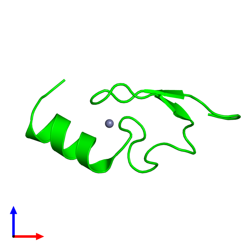 <div class='caption-body'><ul class ='image_legend_ul'> Monomeric assembly 1 of PDB entry 2w0t coloured by chemically distinct molecules and viewed from the front. This assembly contains:<li class ='image_legend_li'>One copy of LETHAL(3)MALIGNANT BRAIN TUMOR-LIKE 2 PROTEIN</li><li class ='image_legend_li'>One copy of ZINC ION</li></ul></div>