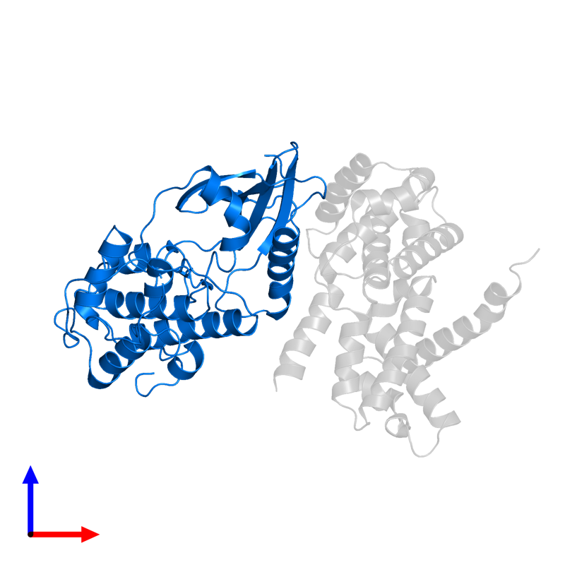 <div class='caption-body'>PDB entry 2w9z contains 1 copy of CELL DIVISION PROTEIN KINASE 4 in assembly 1. This protein is highlighted and viewed from the front.</div>