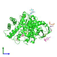 PDB 2wfz coloured by chain and viewed from the side.