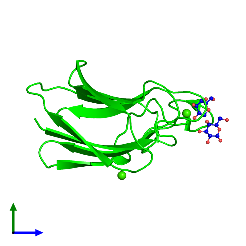 <div class='caption-body'><ul class ='image_legend_ul'> Monomeric assembly 1 of PDB entry 2xfe coloured by chemically distinct molecules and viewed from the side. This assembly contains:<li class ='image_legend_li'>One copy of CBM60 domain-containing protein</li><li class ='image_legend_li'>One copy of beta-D-galactopyranose-(1-4)-beta-D-galactopyranose</li><li class ='image_legend_li'>2 copies of CALCIUM ION</li></ul></div>