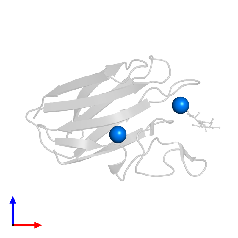 <div class='caption-body'>PDB entry 2xfe contains 2 copies of CALCIUM ION in assembly 1. This small molecule is highlighted and viewed from the front.</div>