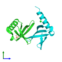 PDB 2xiw coloured by chain and viewed from the front.