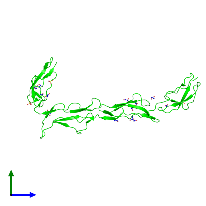 <div class='caption-body'><ul class ='image_legend_ul'> Monomeric assembly 1 of PDB entry 2xrb coloured by chemically distinct molecules and viewed from the front. This assembly contains:<li class ='image_legend_li'>One copy of Complement component receptor 1-like protein</li><li class ='image_legend_li'>3 copies of SULFATE ION</li><li class ='image_legend_li'>13 copies of 1,2-ETHANEDIOL</li></ul></div>