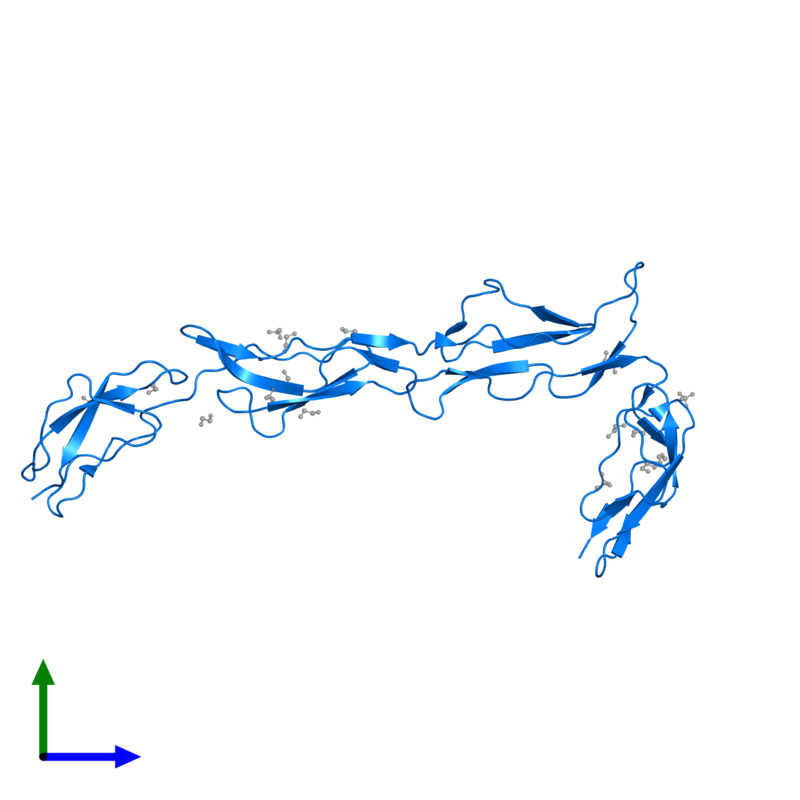 <div class='caption-body'>PDB entry 2xrb contains 1 copy of Complement component receptor 1-like protein in assembly 1. This protein is highlighted and viewed from the front.</div>