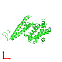 PDB 2y8d coloured by chain and viewed from the front.