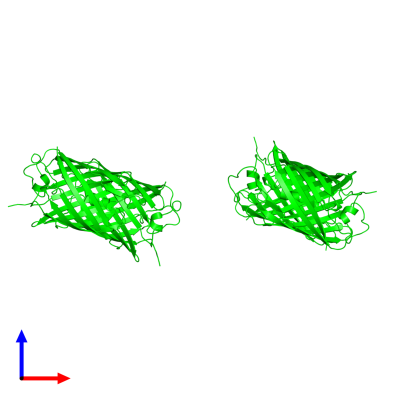 <div class='caption-body'><ul class ='image_legend_ul'>The deposited structure of PDB entry 2zmw coloured by chemically distinct molecules and viewed from the side. The entry contains: <li class ='image_legend_li'>4 copies of Fluorescent protein</li><li class ='image_legend_li'>There are no non-polymeric molecules</li></ul></li></ul></li></div>