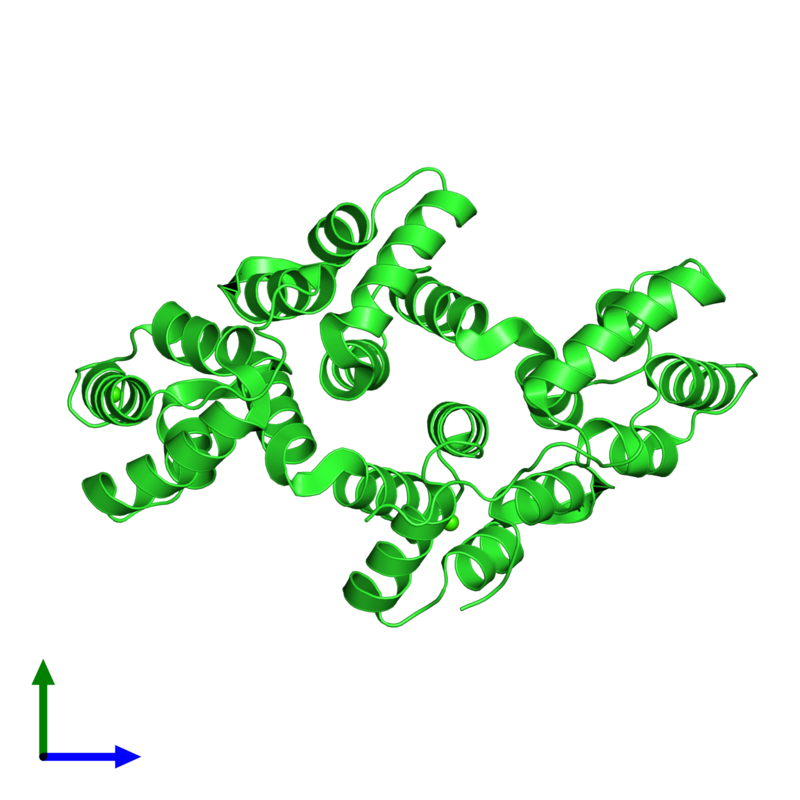 <div class='caption-body'><ul class ='image_legend_ul'> Monomeric assembly 2 of PDB entry 2zoc coloured by chain and viewed from the front. This assembly contains:<li class ='image_legend_li'>One copy of Annexin A4</li><li class ='image_legend_li'>4 copies of CALCIUM ION</li></ul></div>