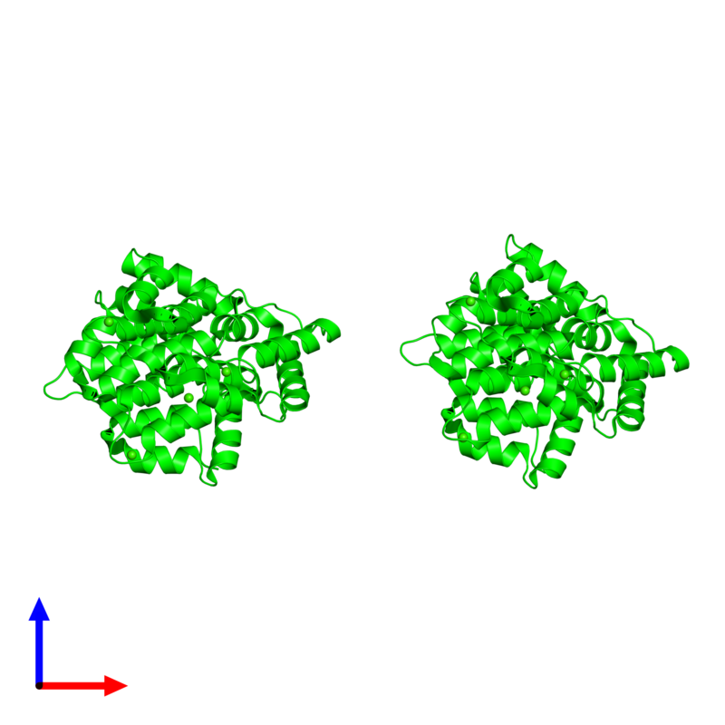 <div class='caption-body'><ul class ='image_legend_ul'>The deposited structure of PDB entry 2zoc coloured by chemically distinct molecules and viewed from the side. The entry contains: <li class ='image_legend_li'>2 copies of Annexin A4</li><li class ='image_legend_li'>There is 1 non-polymeric molecule<ul class ='image_legend_ul'><li class ='image_legend_li'>8 copies of CALCIUM ION</li></ul></li></div>