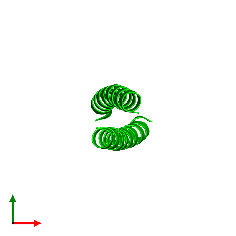 <div class='caption-body'><ul class ='image_legend_ul'> Dimeric assembly 1 of PDB entry 2zta coloured by chemically distinct molecules and viewed from the top. This assembly contains:<li class ='image_legend_li'>2 copies of General control transcription factor GCN4</li></ul></div>