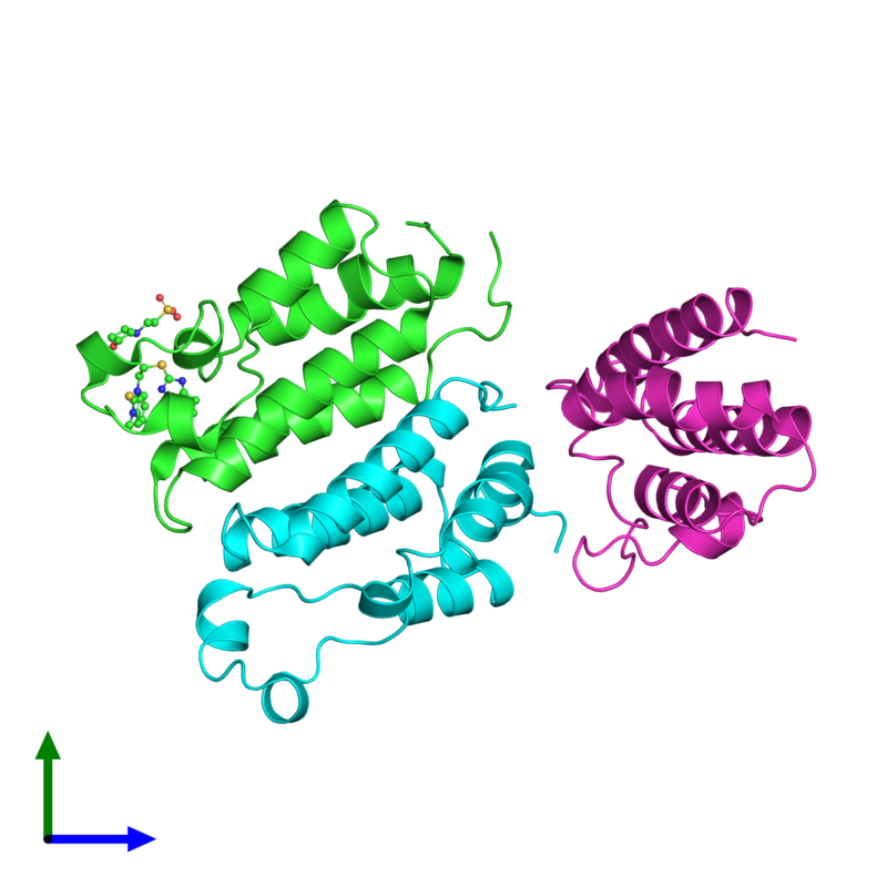 <div class='caption-body'><ul class ='image_legend_ul'>The deposited structure of PDB entry 3aqa coloured by chain and viewed from the front. The entry contains: <li class ='image_legend_li'>3 copies of Bromodomain-containing protein 2</li><li class ='image_legend_li'>2 non-polymeric entities<ul class ='image_legend_ul'><li class ='image_legend_li'>1 copy of 1-[2-(1H-benzimidazol-2-ylsulfanyl)ethyl]-3-methyl-1,3-dihydro-2H-benzimidazole-2-thione</li><li class ='image_legend_li'>1 copy of 2-(N-MORPHOLINO)-ETHANESULFONIC ACID</li></ul></li></div>