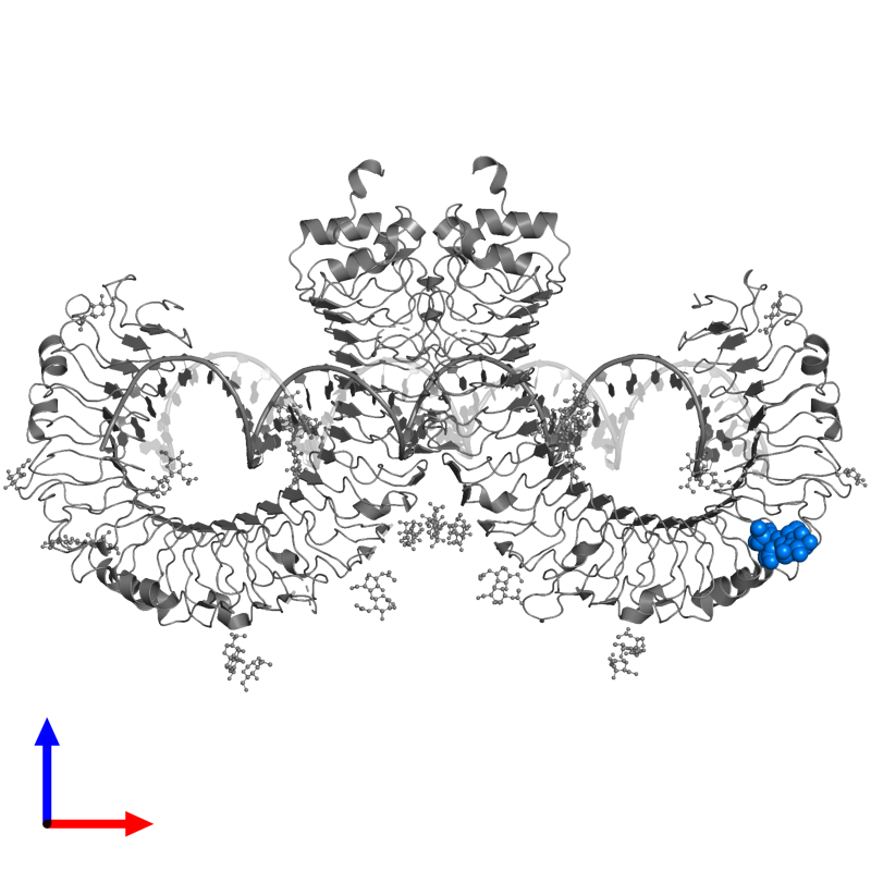 <div class='caption-body'>PDB entry 3ciy contains 1 copy of beta-D-mannopyranose-(1-4)-2-acetamido-2-deoxy-beta-D-glucopyranose-(1-4)-2-acetamido-2-deoxy-beta-D-glucopyranose in assembly 1. This small molecule is highlighted and viewed from the front.</div>