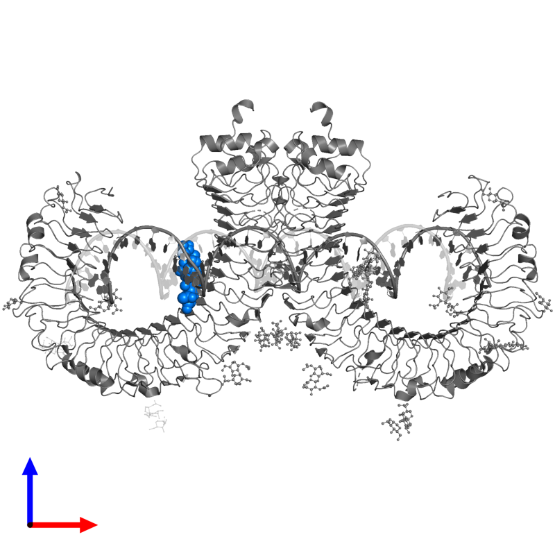 <div class='caption-body'>PDB entry 3ciy contains 1 copy of alpha-D-mannopyranose-(1-3)-[alpha-D-mannopyranose-(1-6)]alpha-D-mannopyranose-(1-4)-2-acetamido-2-deoxy-alpha-D-glucopyranose-(1-4)-2-acetamido-2-deoxy-beta-D-glucopyranose in assembly 1. This small molecule is highlighted and viewed from the front.</div>