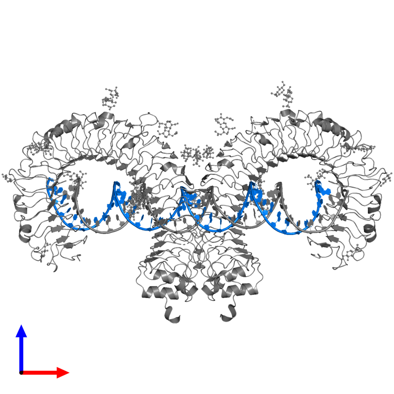 <div class='caption-body'>PDB entry 3ciy contains 1 copy of 46-MER in assembly 1. This RNA molecule is highlighted and viewed from the front.</div>