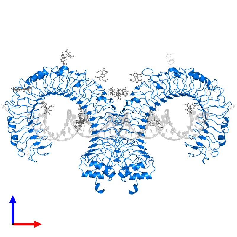 <div class='caption-body'>PDB entry 3ciy contains 2 copies of Toll-like receptor 3 in assembly 1. This protein is highlighted and viewed from the front.</div>