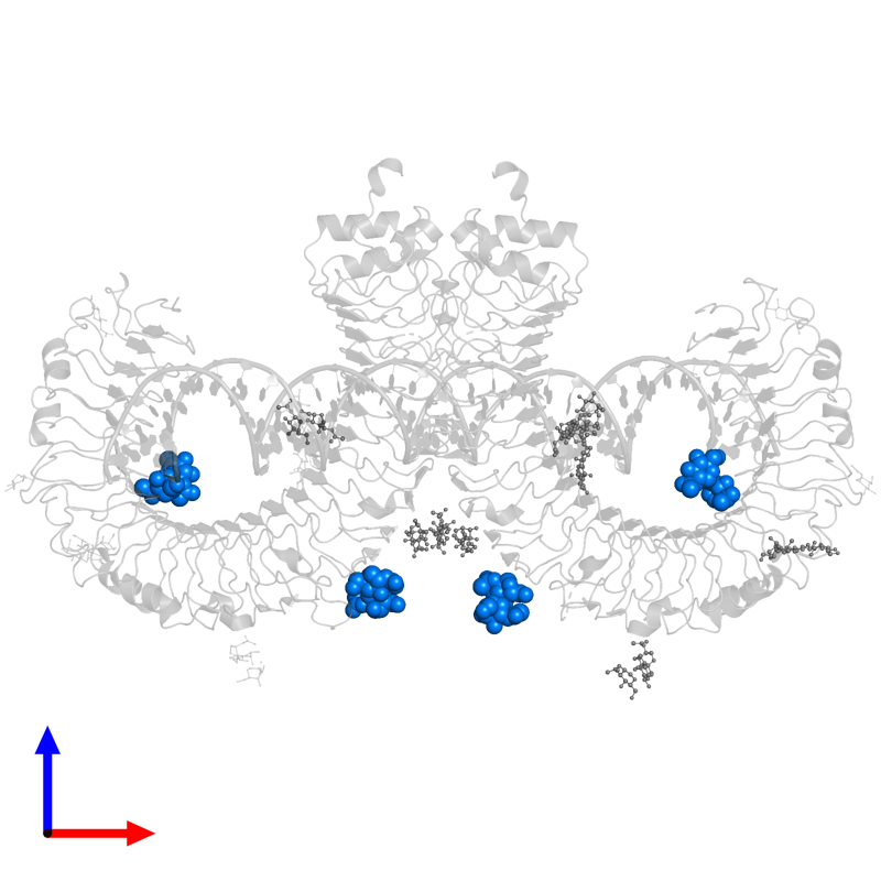 <div class='caption-body'>PDB entry 3ciy contains 4 copies of 2-acetamido-2-deoxy-alpha-D-glucopyranose-(1-4)-2-acetamido-2-deoxy-beta-D-glucopyranose in assembly 1. This small molecule is highlighted and viewed from the front.</div>