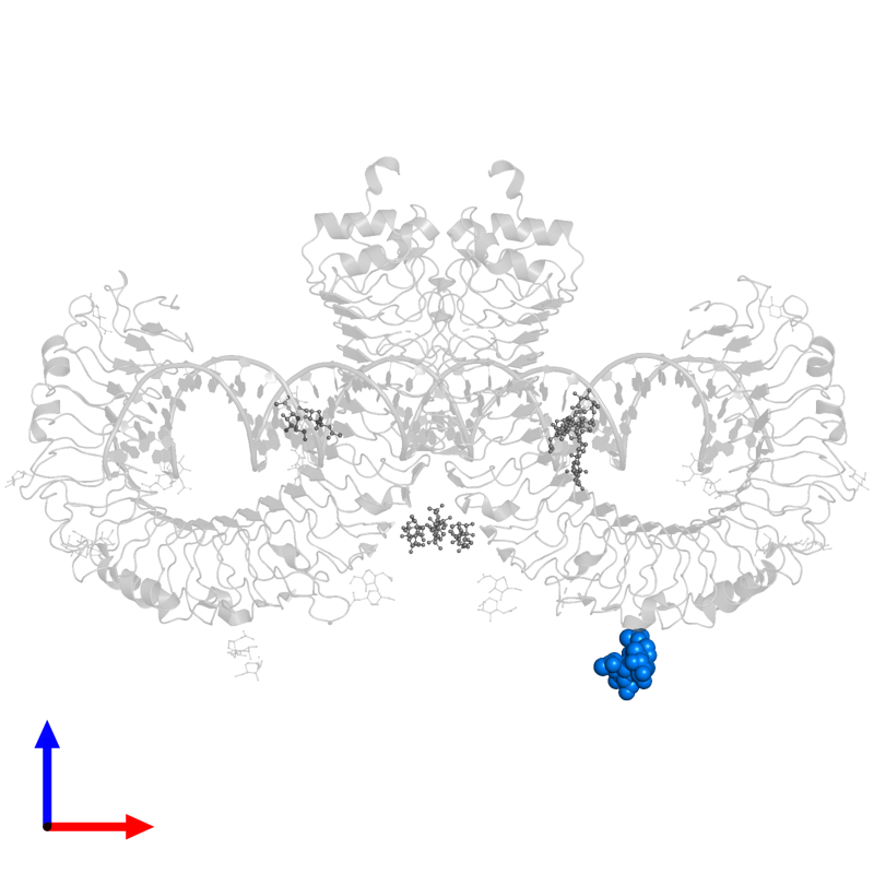 <div class='caption-body'>PDB entry 3ciy contains 1 copy of 2-acetamido-2-deoxy-beta-D-glucopyranose-(1-4)-[alpha-L-fucopyranose-(1-6)]2-acetamido-2-deoxy-beta-D-glucopyranose in assembly 1. This small molecule is highlighted and viewed from the front.</div>