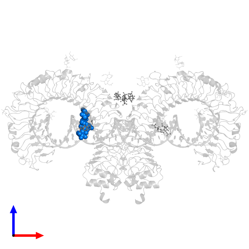 <div class='caption-body'>PDB entry 3ciy contains 1 copy of alpha-D-mannopyranose-(1-3)-[alpha-D-mannopyranose-(1-6)]alpha-D-mannopyranose-(1-4)-2-acetamido-2-deoxy-beta-D-glucopyranose-(1-4)-2-acetamido-2-deoxy-beta-D-glucopyranose in assembly 1. This small molecule is highlighted and viewed from the front.</div>