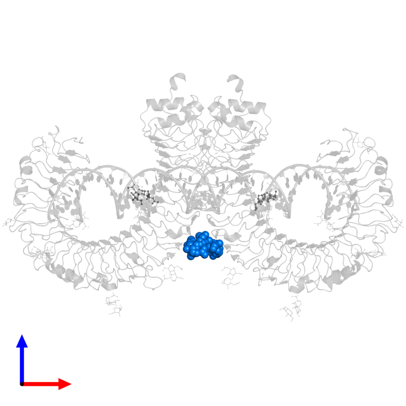 <div class='caption-body'>PDB entry 3ciy contains 2 copies of beta-D-mannopyranose-(1-4)-2-acetamido-2-deoxy-alpha-D-glucopyranose-(1-4)-2-acetamido-2-deoxy-beta-D-glucopyranose in assembly 1. This small molecule is highlighted and viewed from the front.</div>