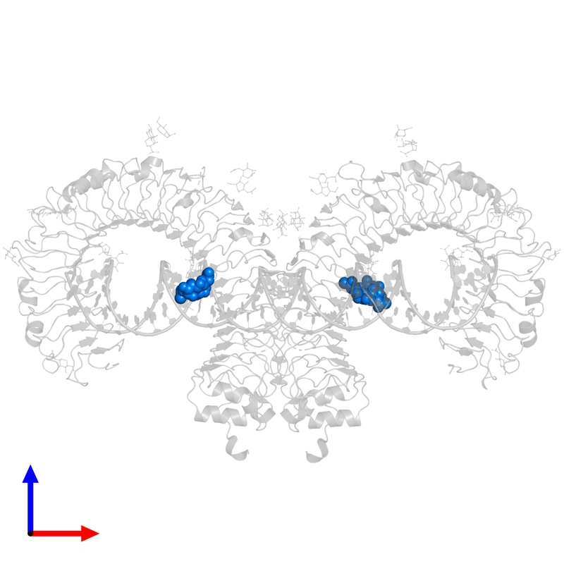 <div class='caption-body'>PDB entry 3ciy contains 2 copies of 2-acetamido-2-deoxy-beta-D-glucopyranose-(1-4)-2-acetamido-2-deoxy-beta-D-glucopyranose in assembly 1. This small molecule is highlighted and viewed from the front.</div>