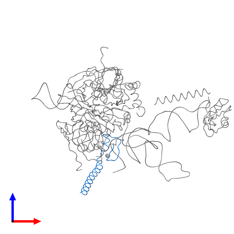<div class='caption-body'>PDB entry 3cw1 contains 1 copy of U1 small nuclear ribonucleoprotein C in assembly 1. This protein is highlighted and viewed from the front.</div>