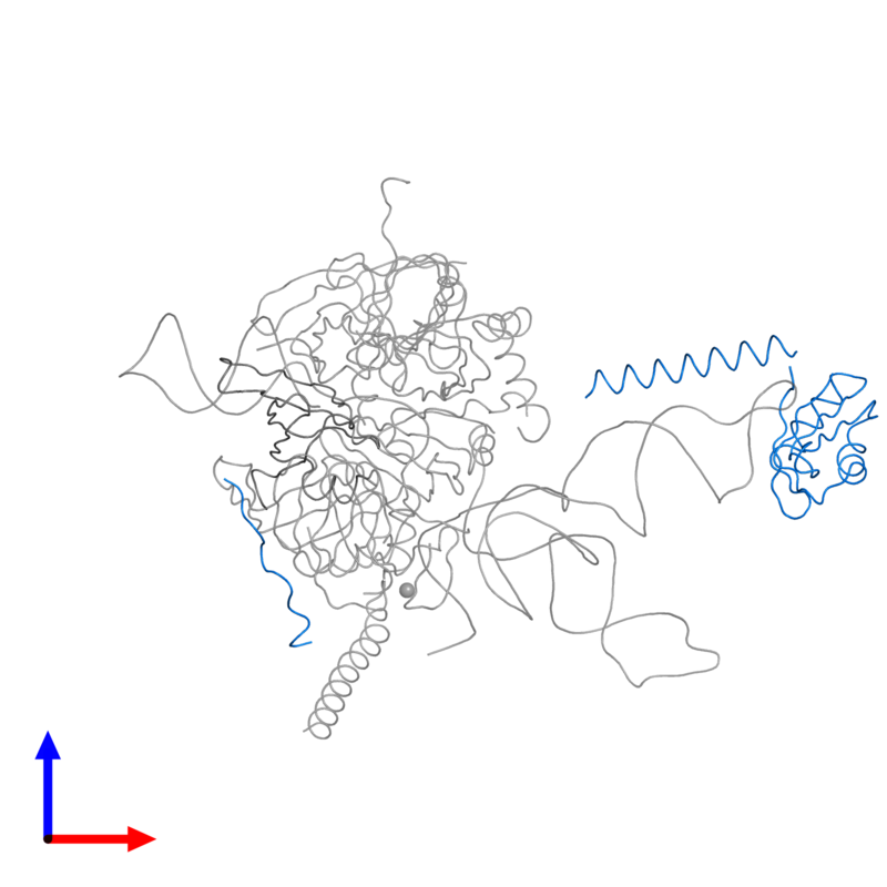<div class='caption-body'>PDB entry 3cw1 contains 1 copy of U1 small nuclear ribonucleoprotein 70 kDa in assembly 1. This protein is highlighted and viewed from the front.</div>