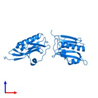 PDB 3d6r contains 4 copies of Non-structural protein 1 in assembly 1. This protein is highlighted and viewed from the front.