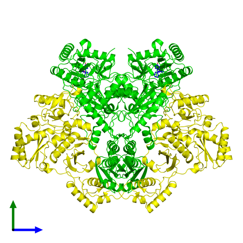 <div class='caption-body'><ul class ='image_legend_ul'> Tetrameric assembly 1 of PDB entry 3di6 coloured by chemically distinct molecules and viewed from the front. This assembly contains:<li class ='image_legend_li'>2 copies of Reverse transcriptase/ribonuclease H</li><li class ='image_legend_li'>2 copies of p51 RT</li><li class ='image_legend_li'>2 copies of 6-(4-chloro-2-fluoro-3-phenoxybenzyl)pyridazin-3(2H)-one</li></ul></div>